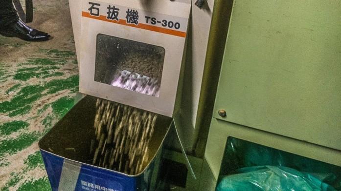 磨き上げられた生豆たち