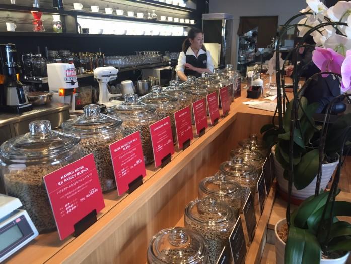 ずらっと並んだ珈琲豆